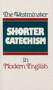 shortcatinenglish