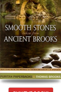 Smooth-Stones-Taken-from-Ancient-Brooks1