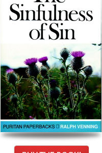 The-Sinfulness-of-Sin
