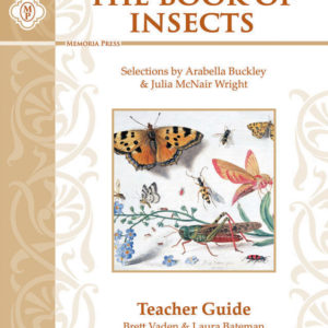 Insects_TeacherKey