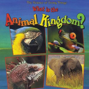 What-Is-the-Animal-Kingdom-915x1024
